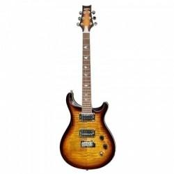 Haineswood H-DK200VS Electric Guitar Artist Series