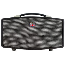 CARLSBRO STINGRAYD5 5W Modeling Guitar Amplifier