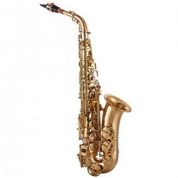 John Packer JP041: Eb Alto Saxophone In Lacquer